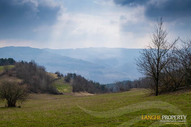 Langhe farmhouse in stunning location-5