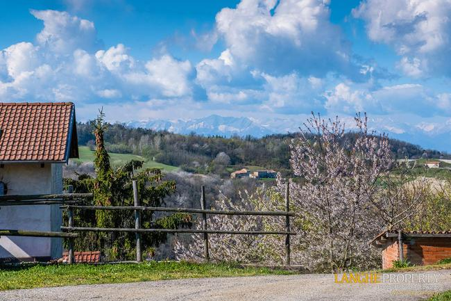 Langhe farmhouse in stunning location-21