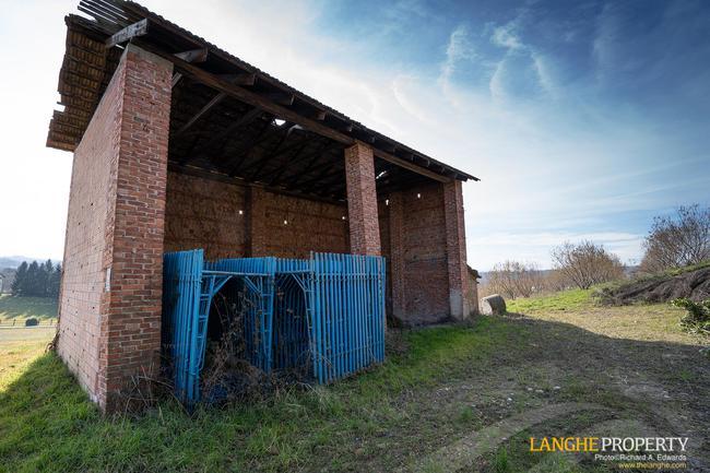 Renovation property-6