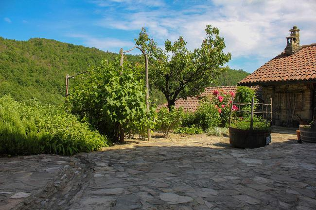 Monferrato country home with beautiful views-5