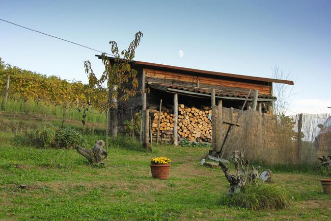 Monferrato country home with beautiful views-17