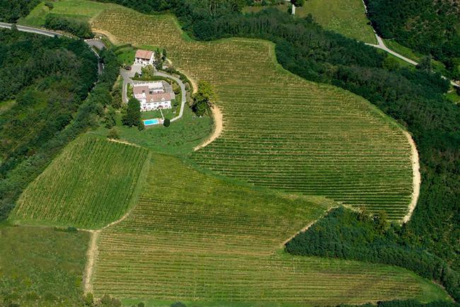 Piedmont wine estate-5