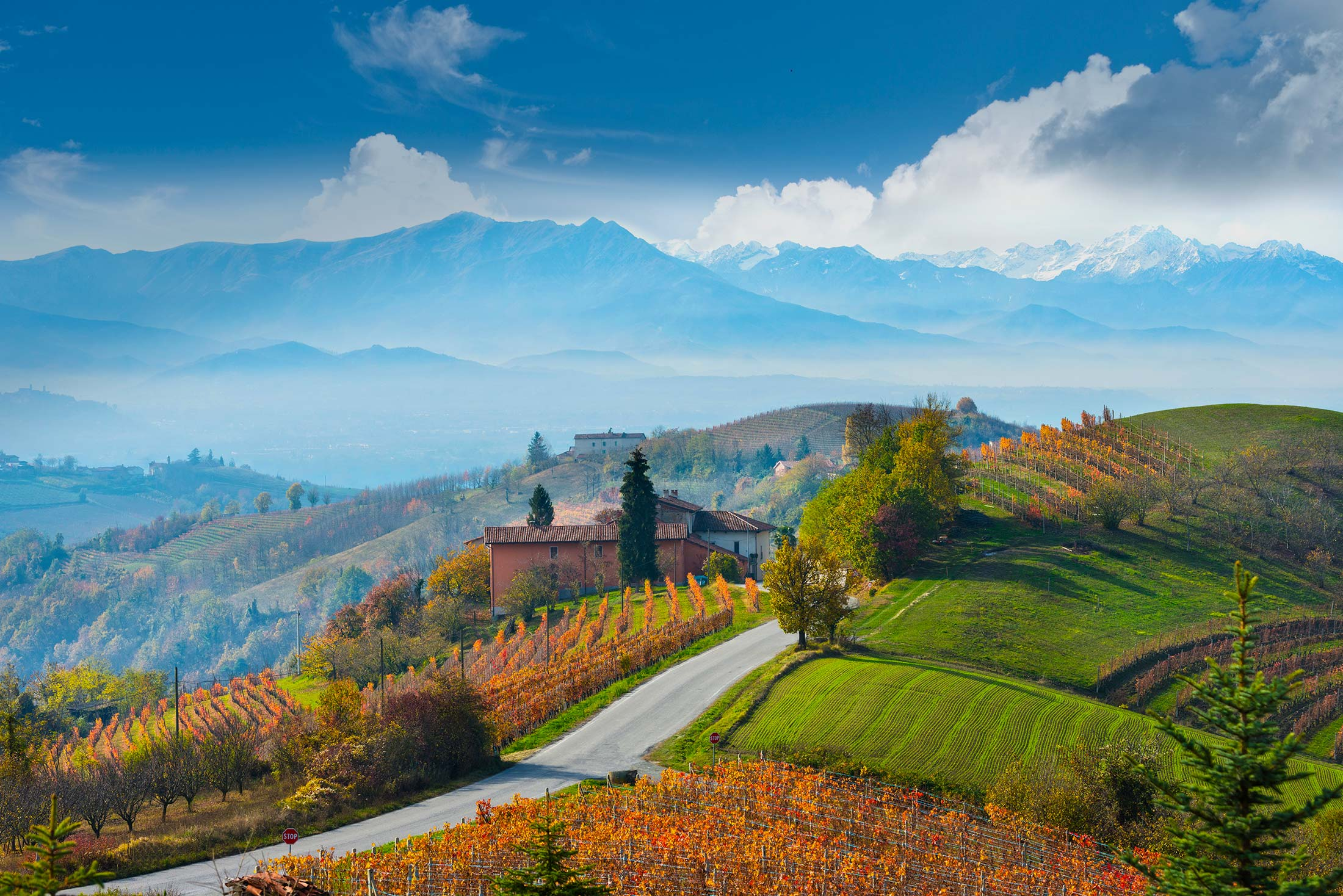Beautiful view of the Langhe in Piedmont with the Alps in the background