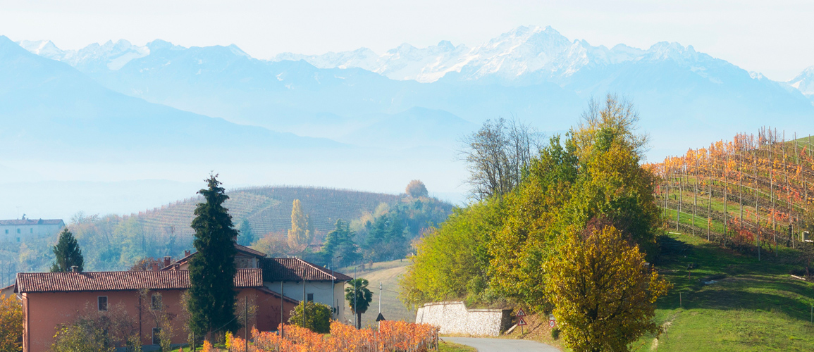 The beautiful Langhe