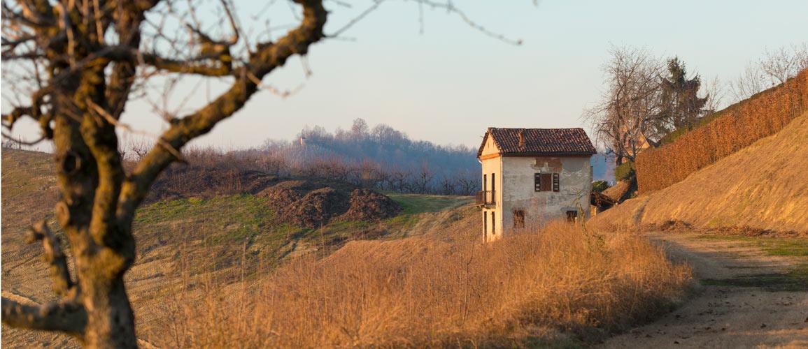 Renovation property in Piedmont