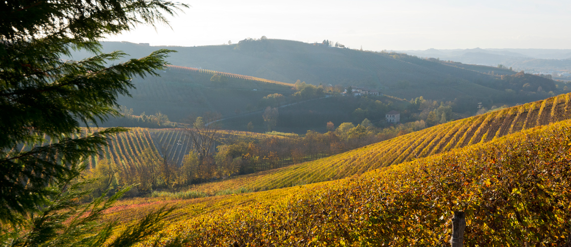 Where to buy a home in Piedmont, Italy