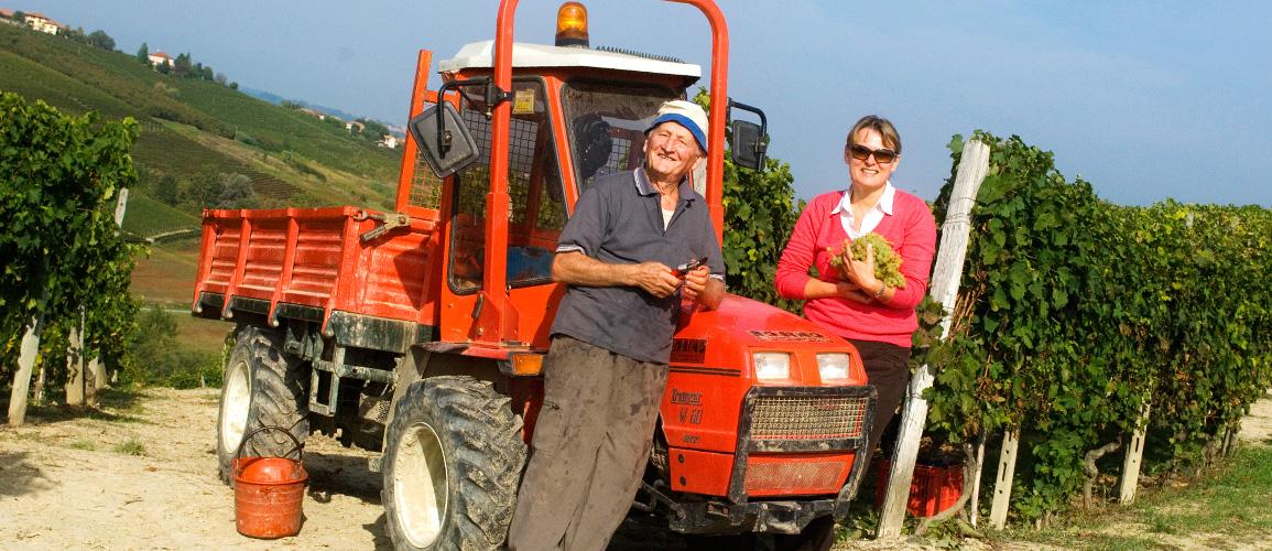 Wine grower in the Langhe