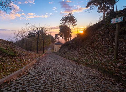 Saretto, Asti Piedmont