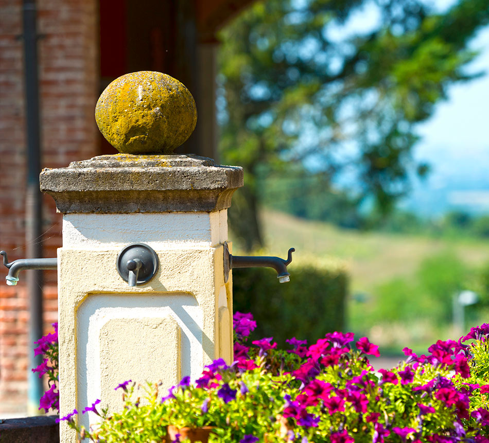 Piedmont home buyers guide